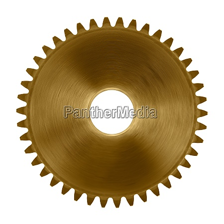 cog wheel on white background