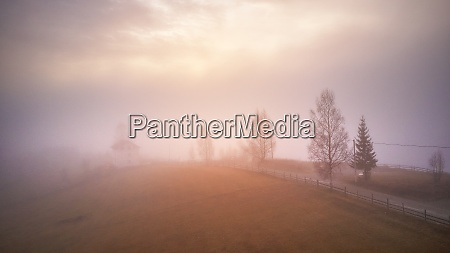 morning fog in mountain valley forest