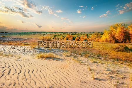 desert in autumn