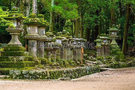 japanese lanterns at kasuga taisha shrine