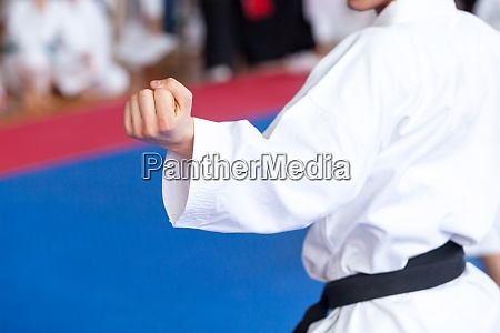 karate practitioner body position during training
