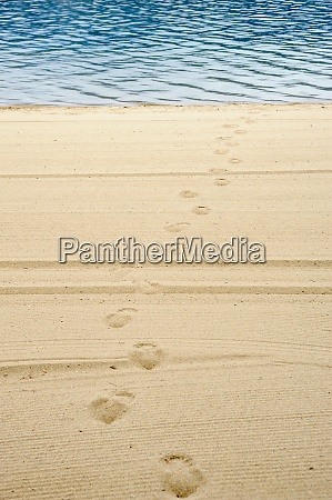 footprints on groomed beach leading from
