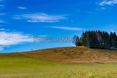 the hike through the humpback meadows