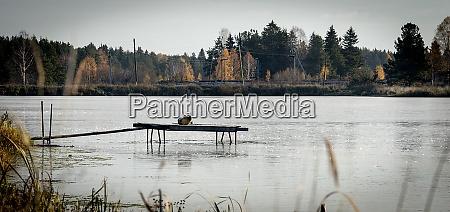 fishing pier on lake empty pier