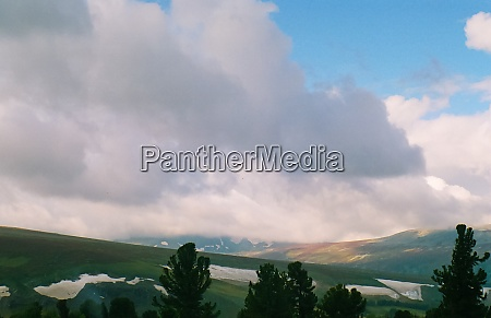 landscape of altai forests coniferous forests