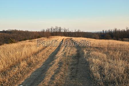 countriside dirt road landscape pale autumn