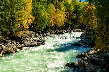 mountain river flows over the rocks