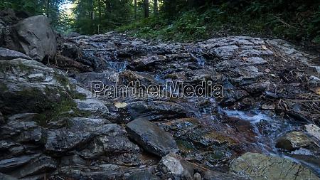 mountain river flows between picturesque summer