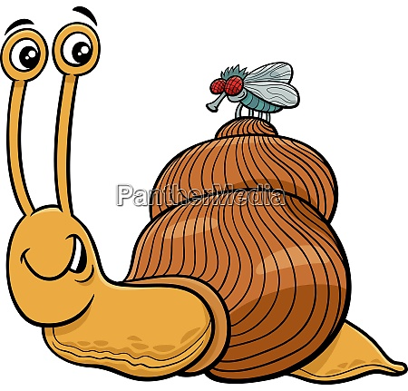 snail and fly characters cartoon illustration