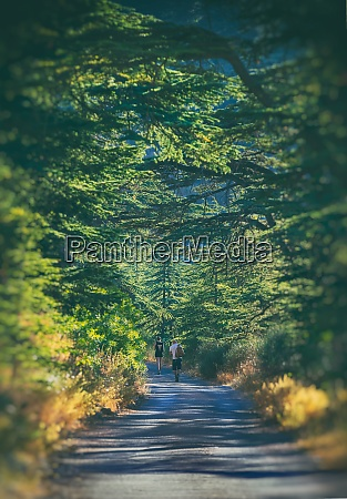 active people hiking in the forest