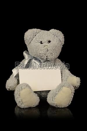 teddy bear announcement