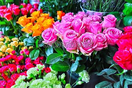 roses in flower shop