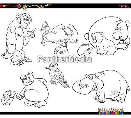 cartoon animal characters set coloring book