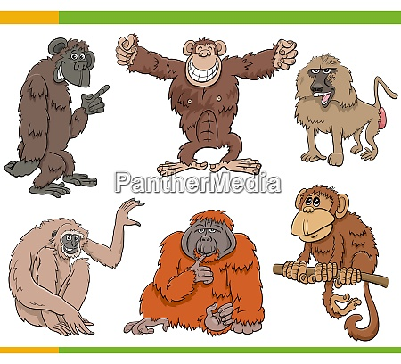monkeys and apes animal characters cartoon