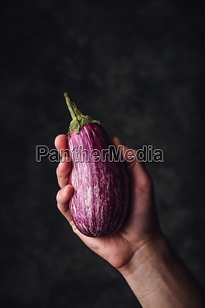 one purple aubergine in hand