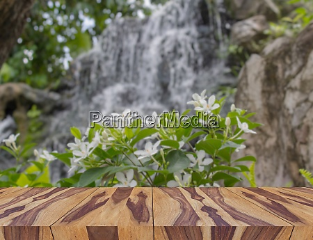 empty wooden plate with burred nature