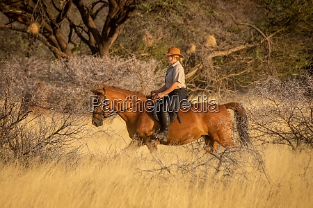blonde horsewoman rides through bushes in