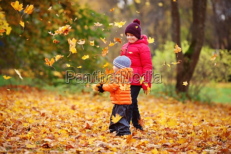 children throwing leaves in beautiful autumnal