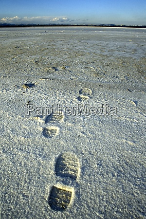 cyprus larnaka salt lake