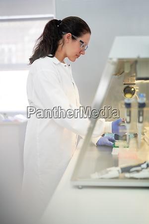 female scientist working at fume hood