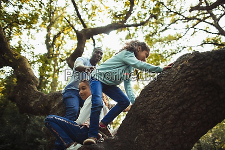 father and daughters climbing tree