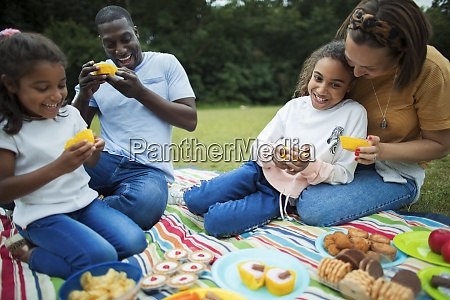 happy family enjoying dessert on picnic