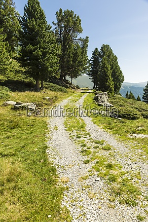 gravel road in european alps during