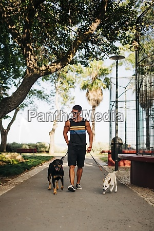 man wearing sunglasses walking with dogs