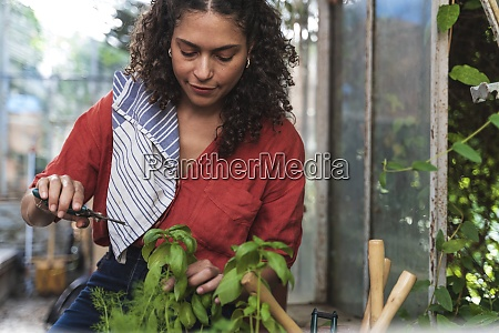 mature woman cutting plant while sitting