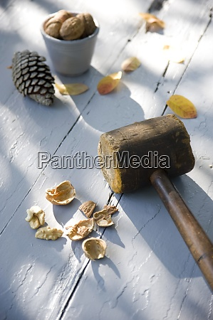 cracked walnut and wooden hammer