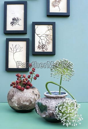 frames with dried seaweeds hanging over