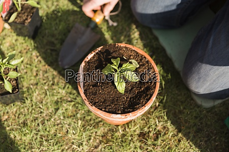 close up of man planting seedling