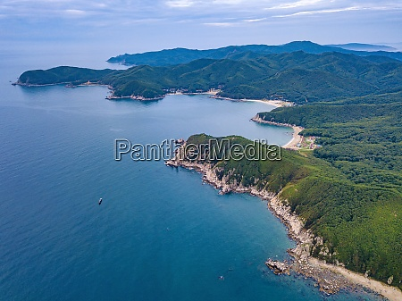 aerial view of forested coastal cliffs