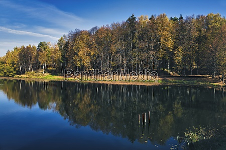 shiny lake reflecting surrounding autumn forest