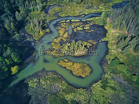 aerial, view, of, river, and, green - 29120805