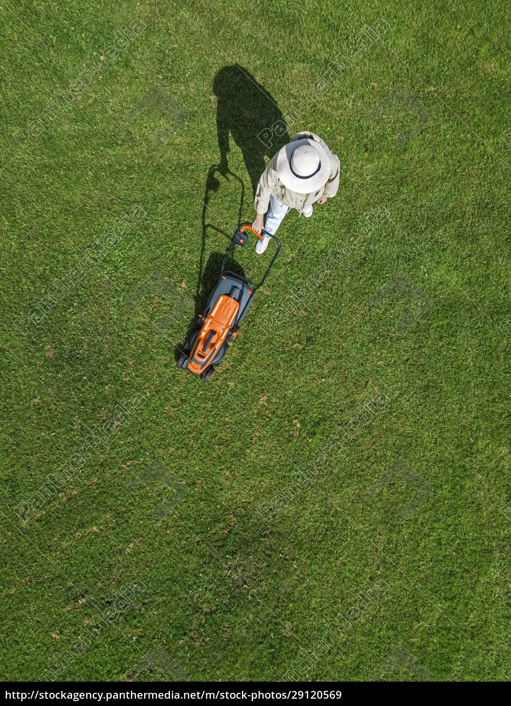 woman, with, lawn, mower, standing, on - 29120569