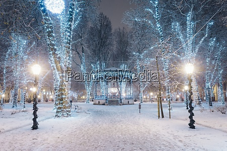 snow covered footpath amidst illuminated trees