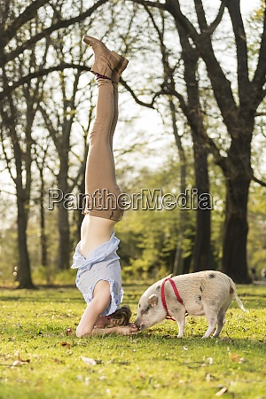 woman doing headstand with piglet in
