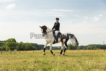 woman riding horse on a meadow