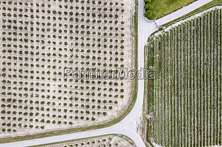 drone, view, of, country, road, stretching - 29121739
