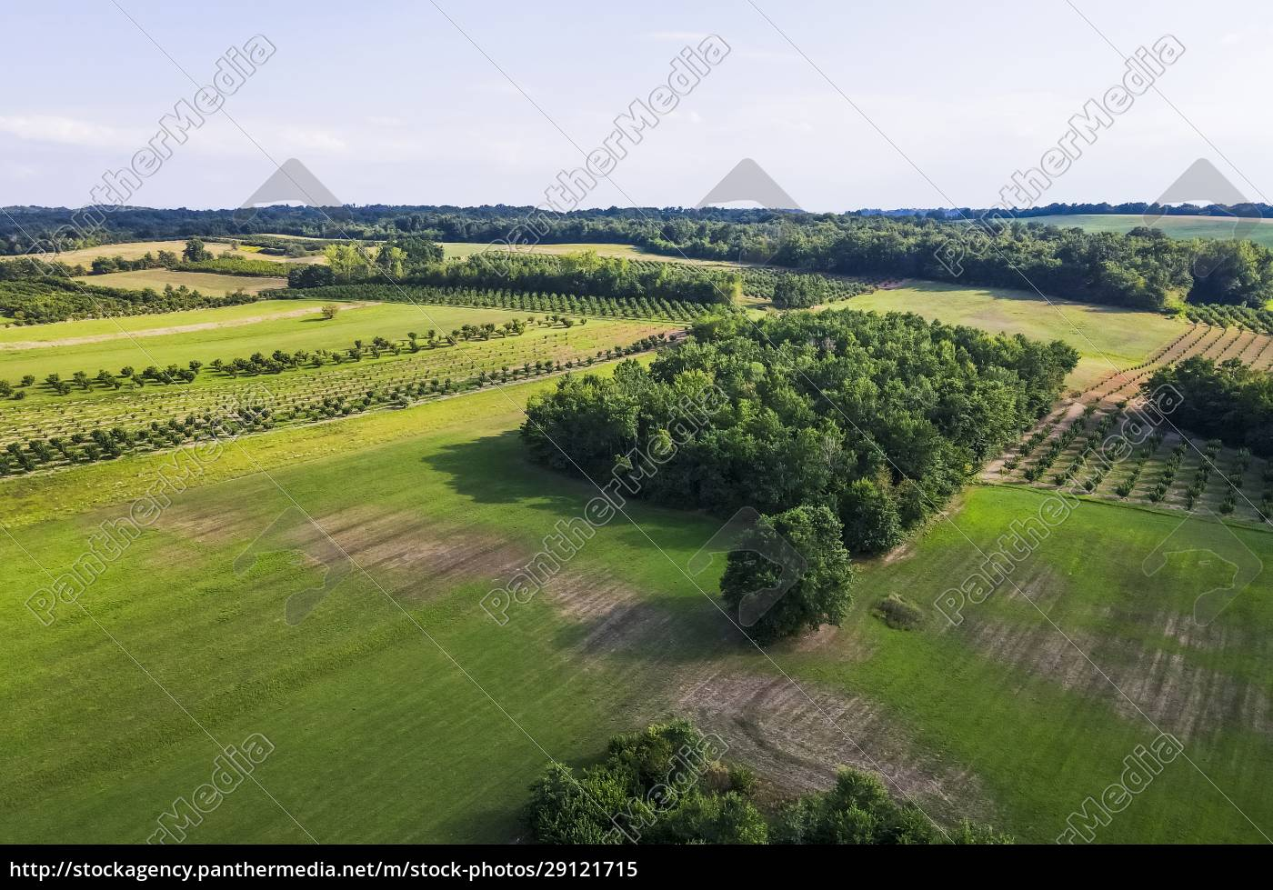 drone, view, of, green, countryside, landscape - 29121715