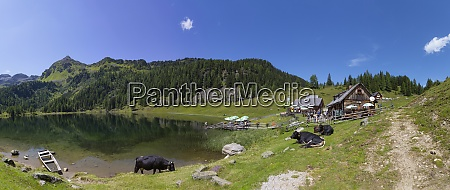 austria styria schladming tauern view of