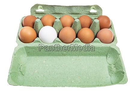 ten various chicken eggs in green