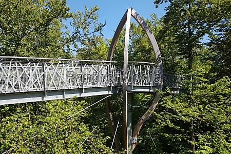 baumkronenweg hessen buchenwald nationalpark kellerwald