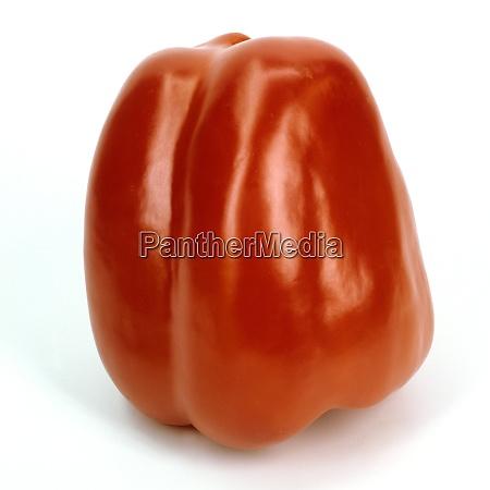 paprika capsicum