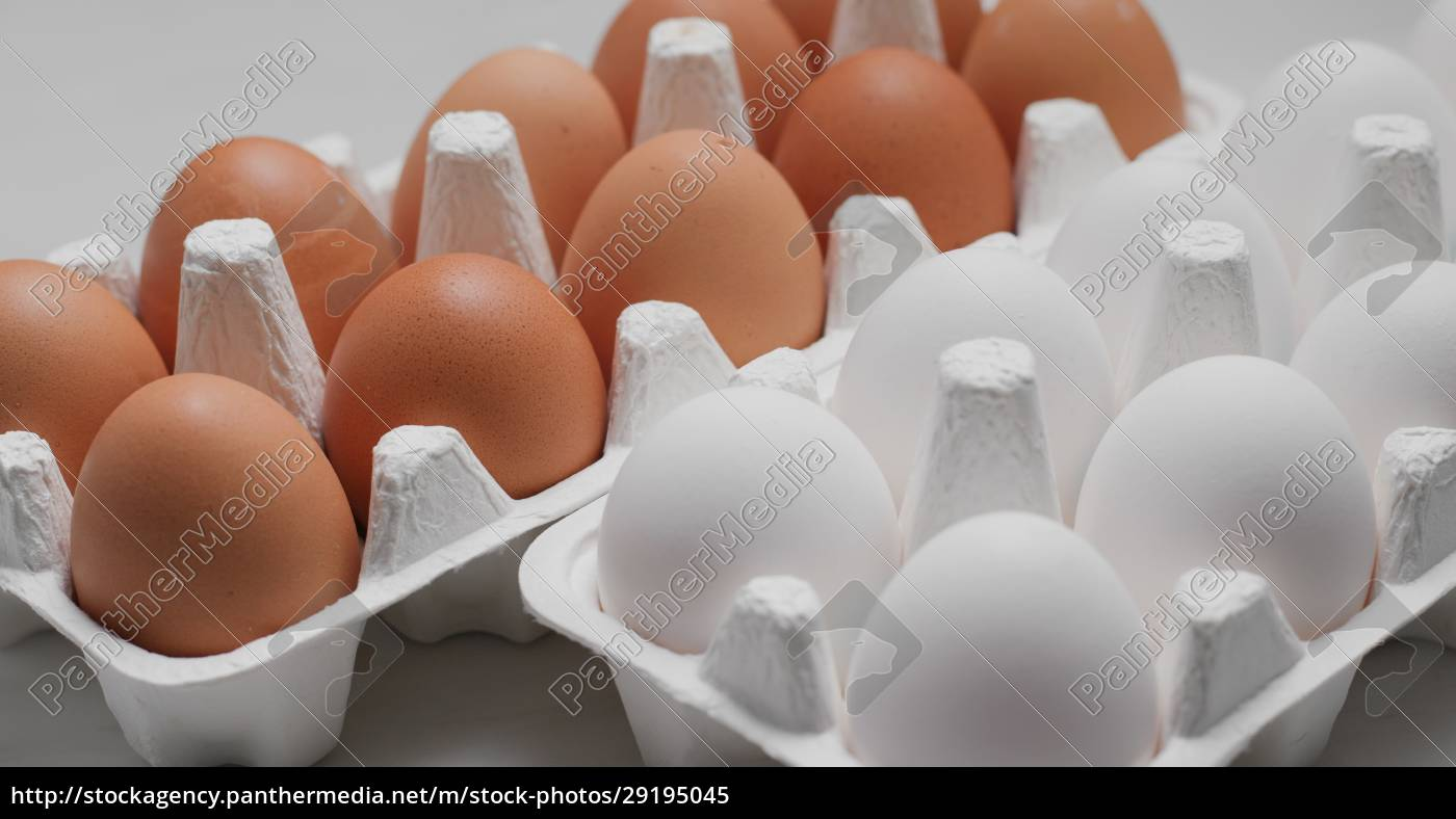 white, and, brown, chicken, egg - 29195045