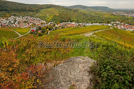 view from vineyard on the village
