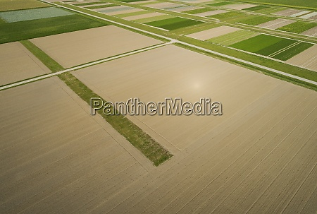 experimental field for strip cultivation a