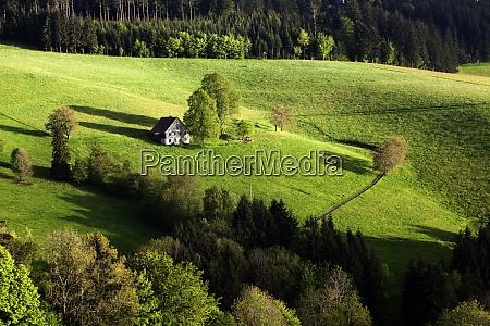 lonely farmhouse between meadows and forests