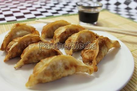 asian fried dumplings